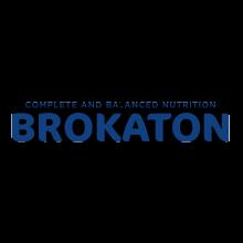 ברוקטון